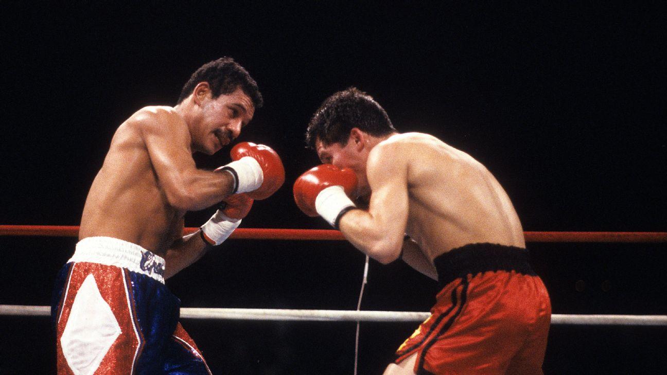 Julio César Chávez vs Edwin Rosario